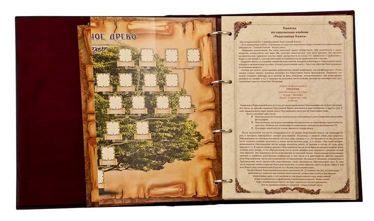 Родословная книга «Изысканная» РК-53