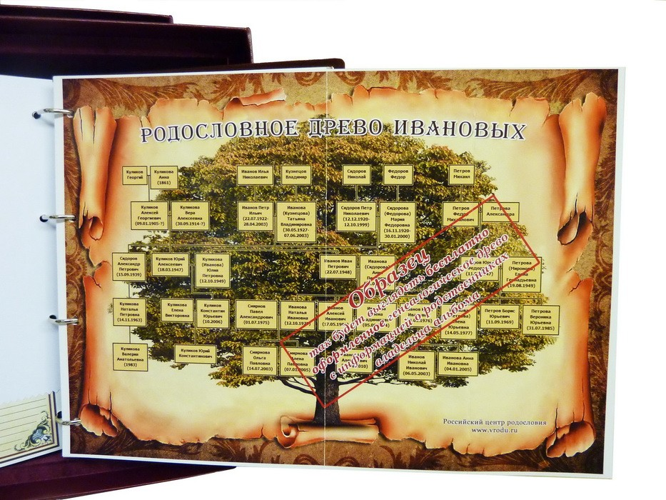 Родословная книга «Изысканная» РК-05
